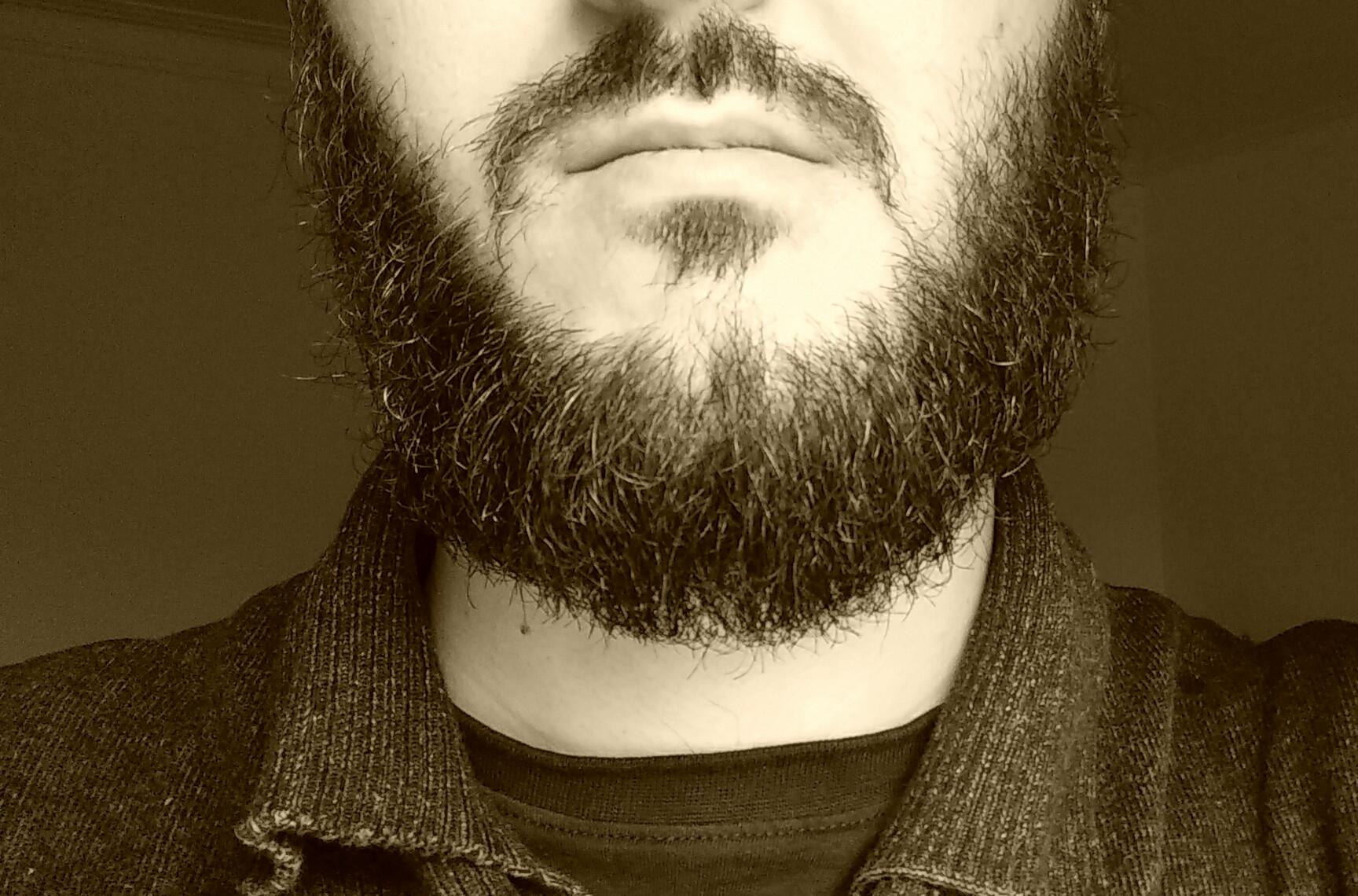 BRADONJA POČETNIK Kako pustiti bradu i prvi koraci do pravog bradonje